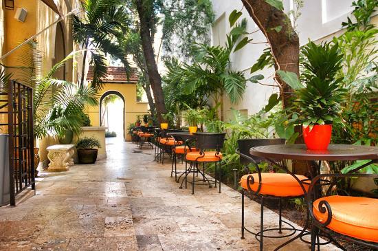 Impala Hotel: Garden area
