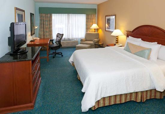 Hilton Garden Inn Orlando International Drive North Photo