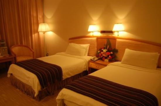 Aviation Sightseeing Hotel: Guest Room