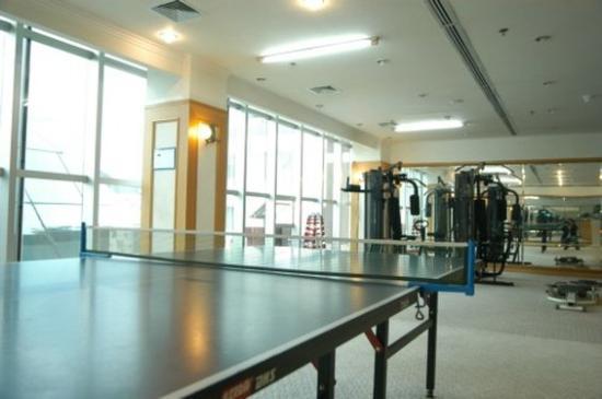 Aviation Sightseeing Hotel: table tennis
