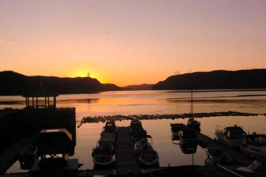 Bistrot du Fjord