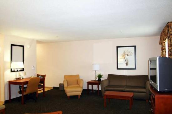 Hampton Inn & Suites Richmond : Suite