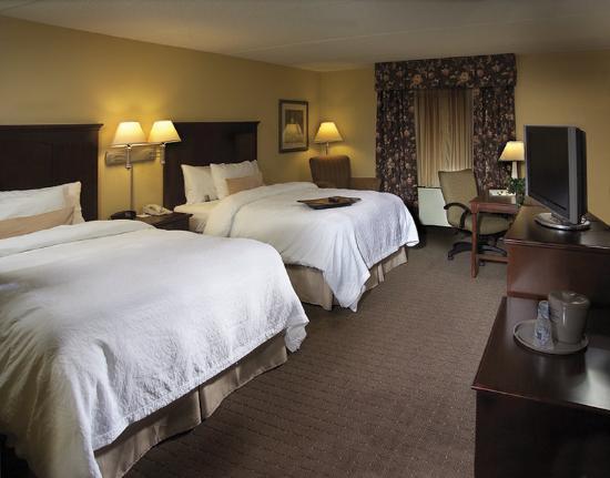 Hampton Inn Schenectady: Guest Room