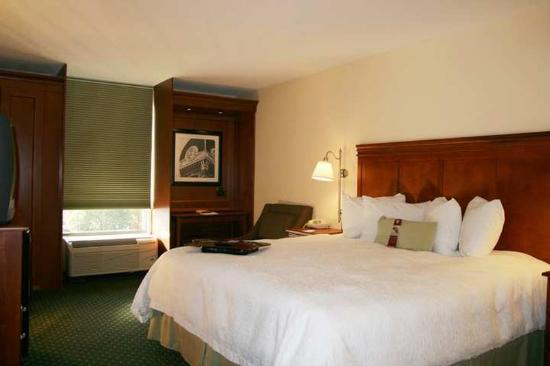 Hampton Inn Athens: Guest Room