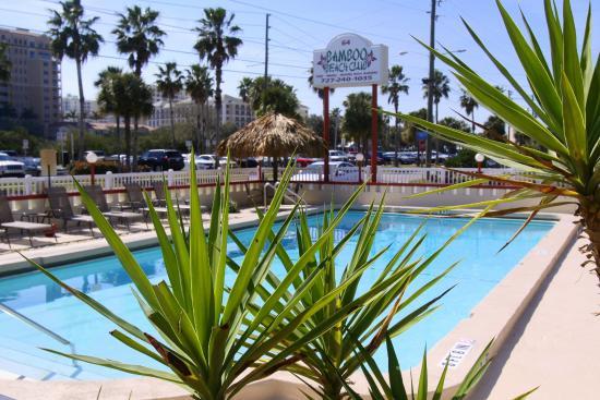 Bamboo Beach Club Updated 2018 Hotel Reviews Price Comparison Clearwater Fl Tripadvisor