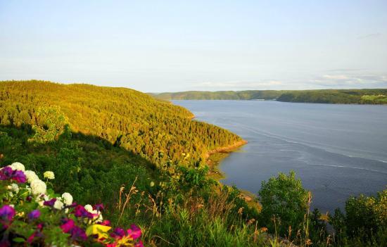 Auberge La Tourelle du Fjord: Vue Est