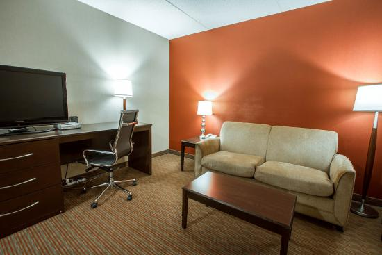 Holiday Inn Express & Suites Downtown Buffalo: Ny Snq