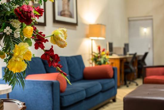Comfort Suites : Lobby 5