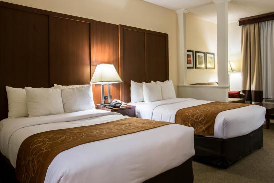 Comfort Suites : Guest Room 1