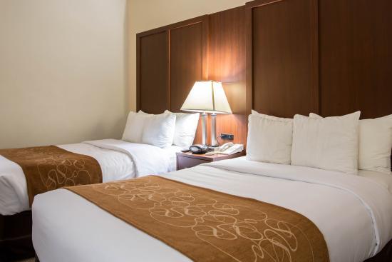 Comfort Suites : Guest Room  2