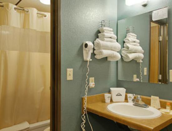 Knights Inn Lincoln Airport: Bathroom