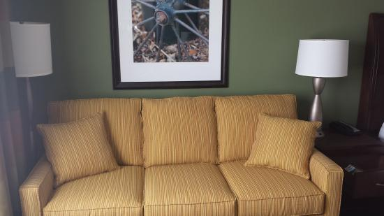 Hilton Garden Inn Green Bay: Queen Size Sofa Sleepers
