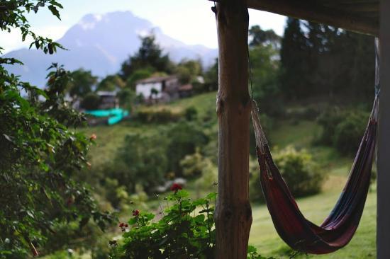 La Luna Mountain Lodge: Hammock with a view