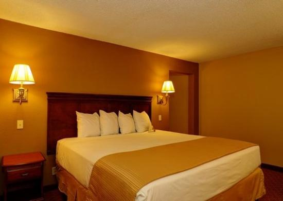Quality Inn & Suites Medical Park: guest room