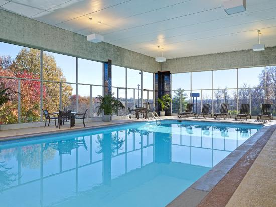 Sheraton music city hotel updated 2017 prices reviews - Preston hotels with swimming pool ...