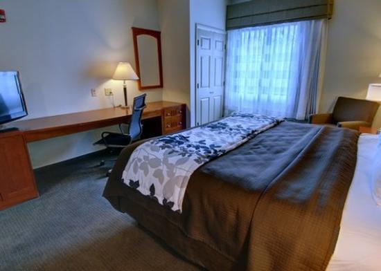 Sleep Inn & Suites: room2a