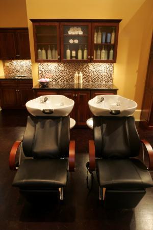 The Martha Washington Inn and Spa: Salon