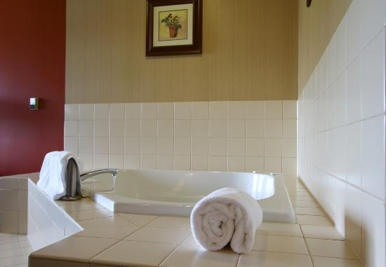 Hotel Mead & Conference Center: Bathroom
