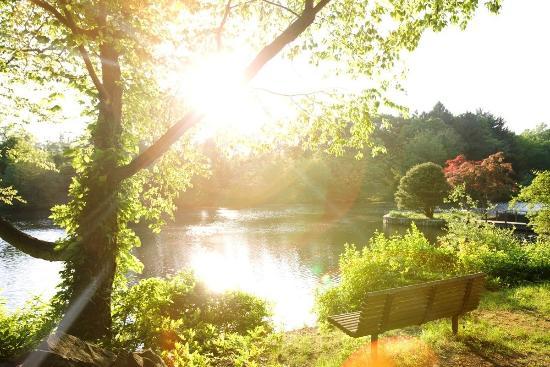 LaKota Oaks : Grounds