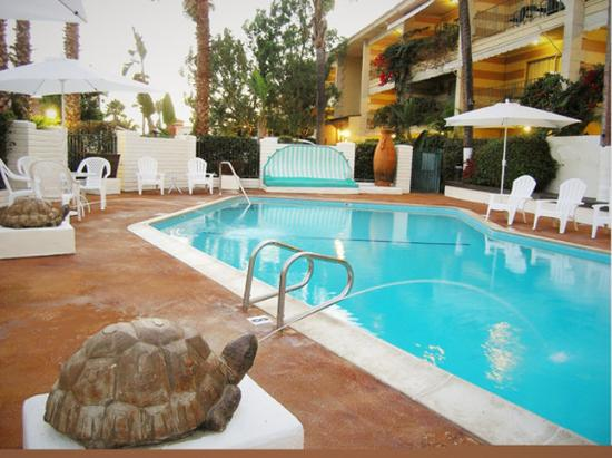 Hotel Pepper Tree: Hotel And Pool Small