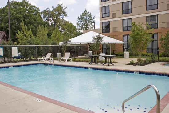 Staybridge Suites Memphis - Poplar Ave East: Pool