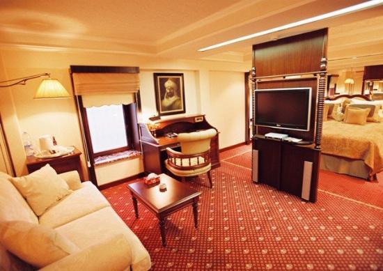 The Boutique Palace Hotel : Suite