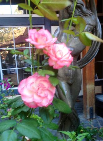 Actor's Corner Cafe: Beautiful ambiance on the Patio
