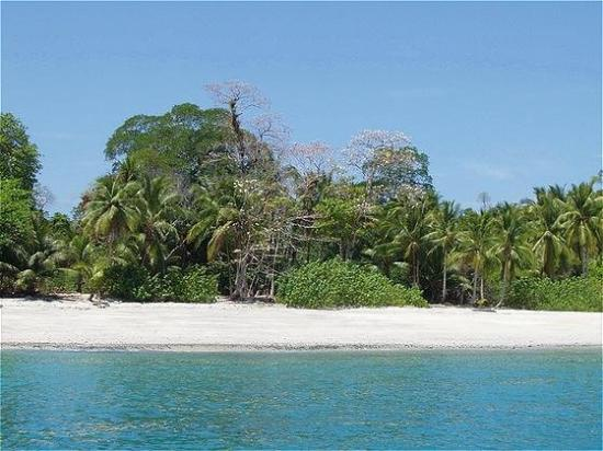 Islas Secas, Panama: beach
