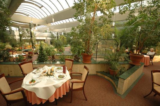 Hotel Kongresowy: Restauracja patio