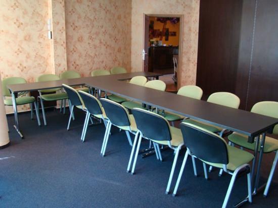 Hotel Alexander's: Meeting Room