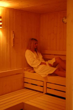Venue Hotel am Park: Sauna