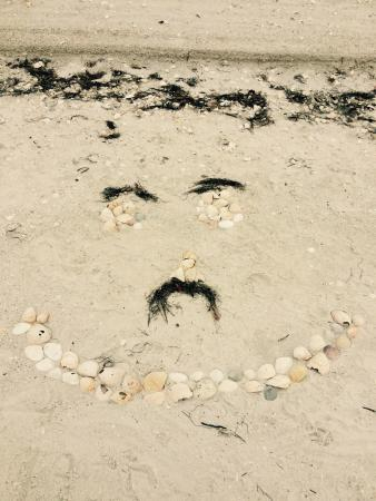 Adventure Cruises Inc.: A smiley face of seashells on the beach at the Sand Key Reserve