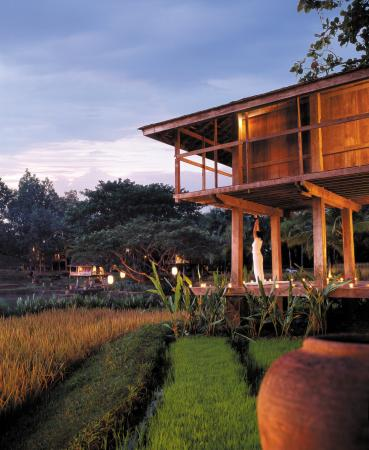 Four Seasons Resort Chiang Mai: Yoga at the Resort's Rice Barn