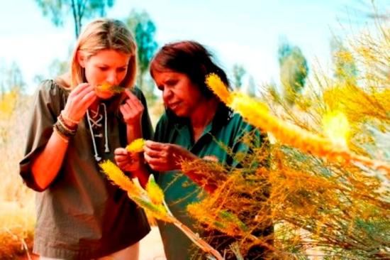 Ayers rock deals