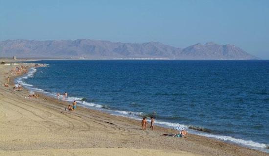 Alcazaba Mar Hotel: Beach