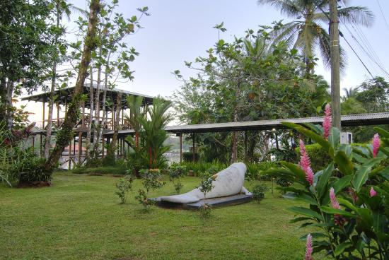 Manatus Hotel: Manatí Manatus