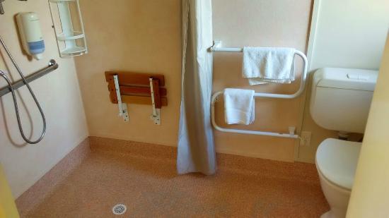 Palm Court Motel: Baño adaptado