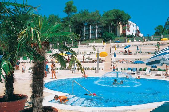 Pool Hotel Pineta