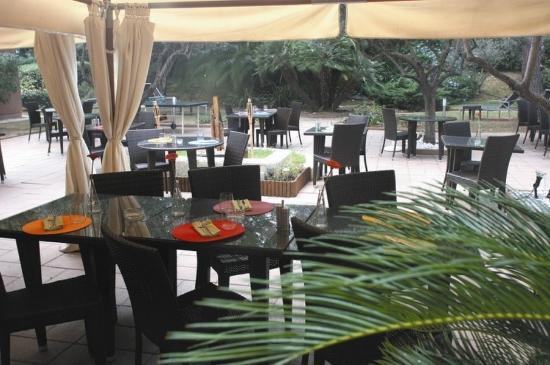 Best Western Plus Hyeres Cote D'Azur : Terrace