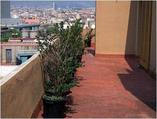 Photo of Apartamentos Mur-Mar Barcelona