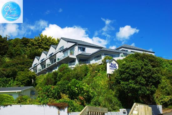 Blue Pacific Apartments Paihia: Exterior View