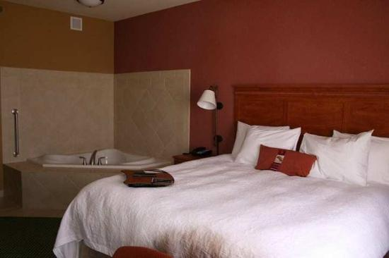 Hampton Inn Garden City: Suite