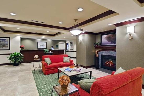 Homewood Suites Tampa Airport - Westshore: Lobby