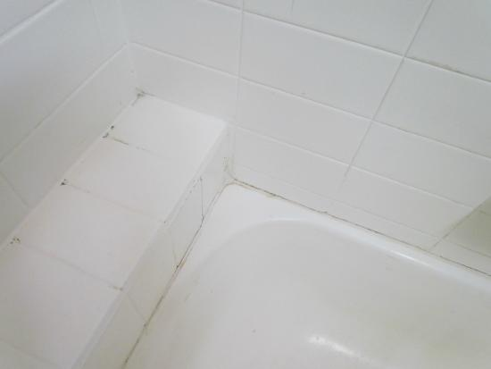 Armadale Serviced Apartments: More filth and black grout