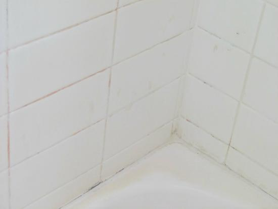 Armadale Serviced Apartments: Note the black in grout, also filth in bath