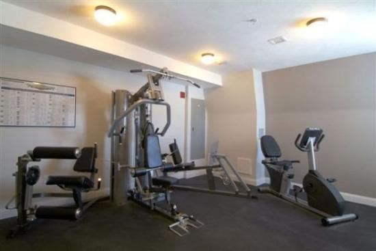 Crescent Suites Hotel: GYM