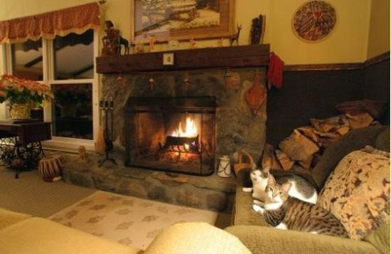 Weathertop Mountain Inn: LOBBYFIREPLACE