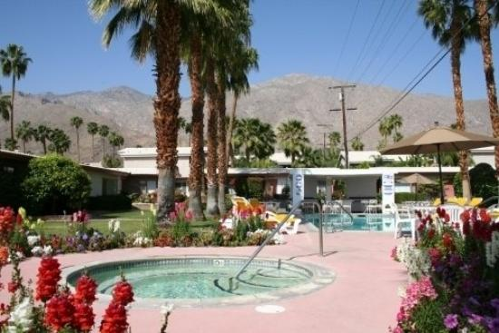 Photo of A Place in the Sun Garden Hotel Palm Springs