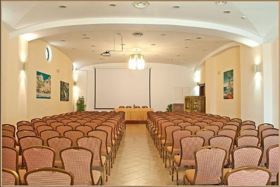 Le Cheminee Business Hotel : Conference Room