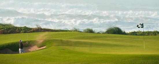 Mazagan Beach & Golf Resort: Golf